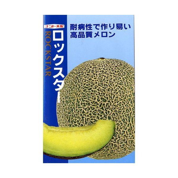 メロンの種 ロックスター 7粒 ( 野菜の種 )