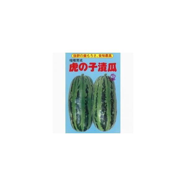 虎の子 (ウリの種) 小袋 約3ml ( 野菜の種 )