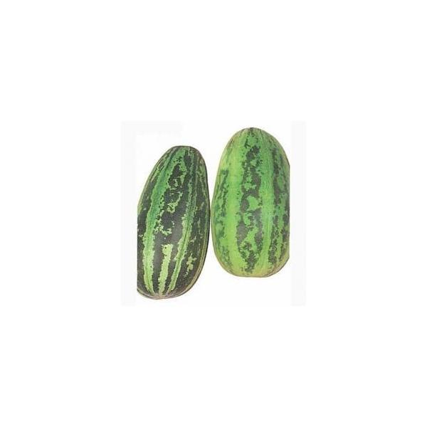 かわずうり (ウリの種) 小袋 約10ml ( 野菜の種 )