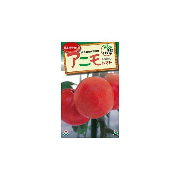 大玉トマトの種 F1アニモ 100粒 ( 野菜の種 )