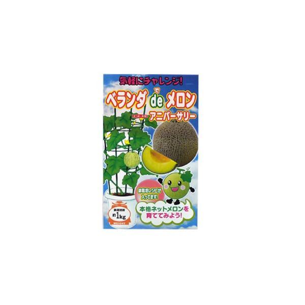 メロンの種 アニバーサリー 100粒 ( 野菜の種 )