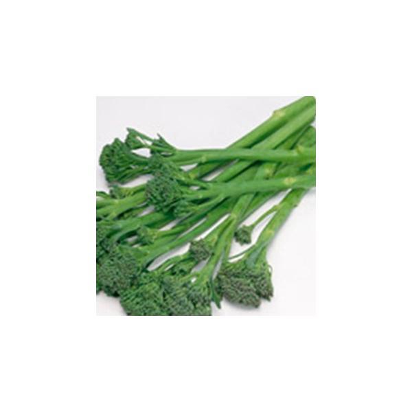 ブロッコリーの種 茎ブロッコリーの種 スティックセニョール ペレット5千粒 ( 野菜の種 )