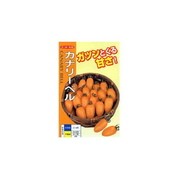 ミニトマトの種 カナリーベル 500粒 ( 野菜の種 )