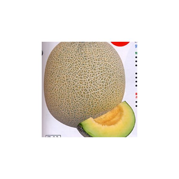 メロンの種 リムジン 100粒 ( 野菜の種 )