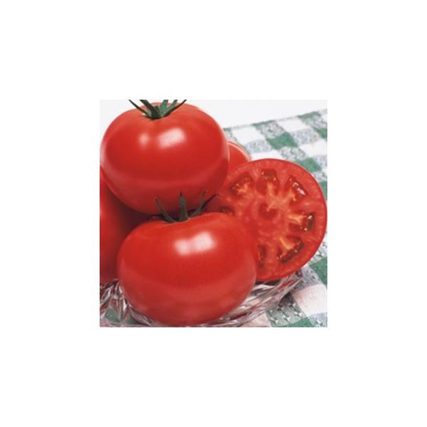 トマトの種 CF桃太郎はるか  DF(18粒) ( 野菜の種 )