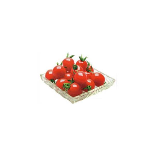 ミニトマトの種 プレミアムルビー 100粒 ( 野菜の種 )