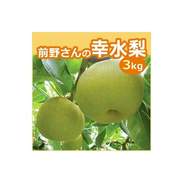 前野さんの幸水梨  3kg 三重県産 ギフト お中元