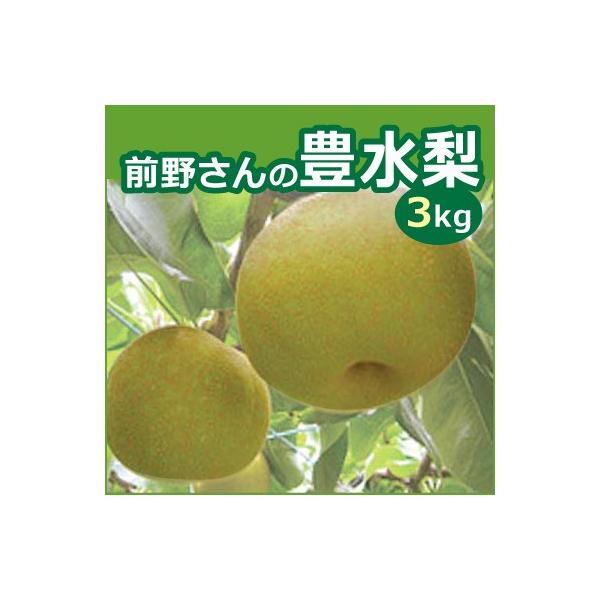 前野さんの豊水梨 三重県産 3kg ギフト お中元