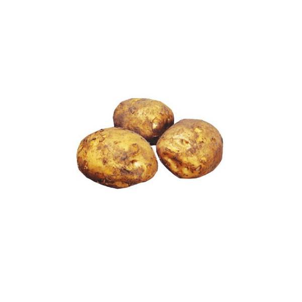 じゃがいも(馬鈴薯) 出島 種芋 種いも 1kg入り(予約販売) 春 秋植え