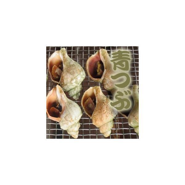 ボイル青つぶ1kg(10〜15個入)(北海道産・自社加工・アブラ除去済)