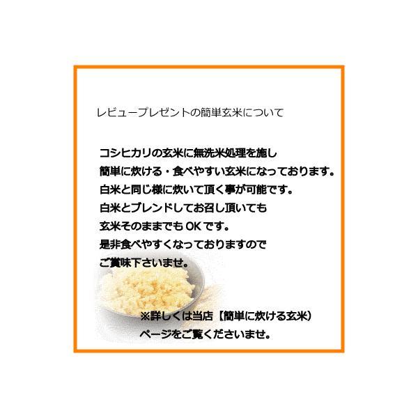 コシヒカリ白米10kg(5kgx2袋) お米 30年度福島県産 太三郎米 (クーポン利用で10%OFF対象商品) saito-rice-3529 04
