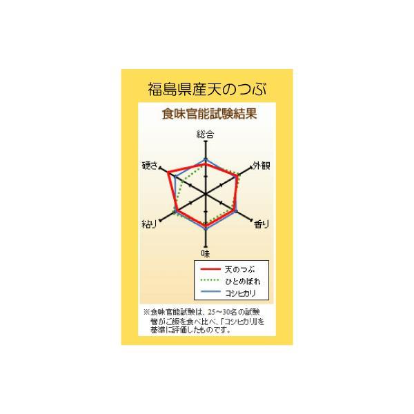 米 お米  天のつぶ白米20kg (5kgx4袋) 29年福島県産 |saito-rice-3529|03
