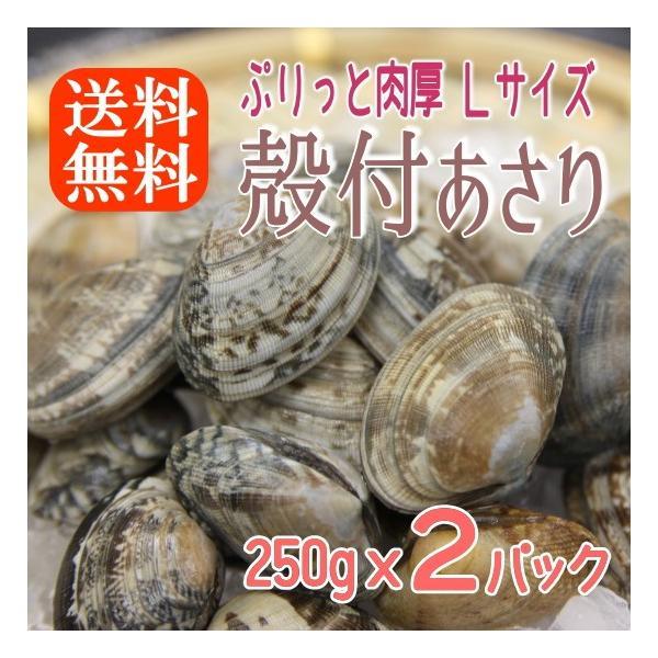 ボイル殻付あさり 砂抜き済み 250gx2パック 濃厚で美味しい 温めるだけ 貝 アサリ あさり 送料無料