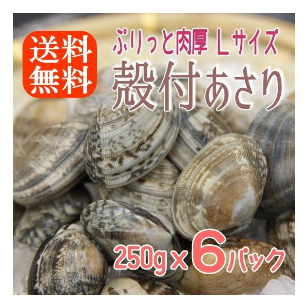 ボイル殻付あさり 砂抜き済み 250gx6パック 濃厚で美味しい 温めるだけ 貝 アサリ あさり 送料無料