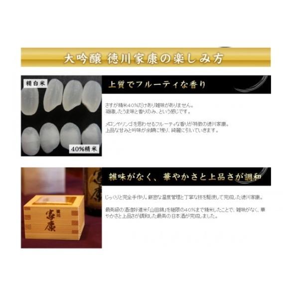 徳川家康(大吟醸酒) 720ml 丸石醸造 (日本酒)(愛知県産の地酒) sake 06