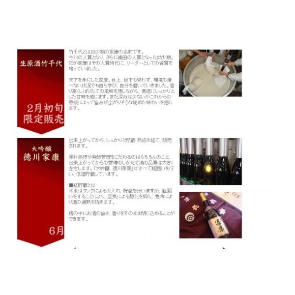 徳川家康(大吟醸酒) 720ml 丸石醸造 (日本酒)(愛知県産の地酒) sake 08