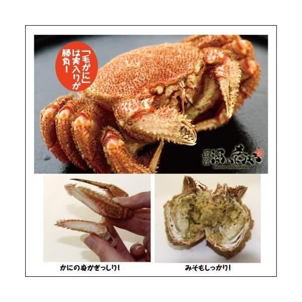 北海道産浜ゆで毛がに(約500g)/ 北海道 ボイル 毛がに ギフト カニ かに sakenosakana 02