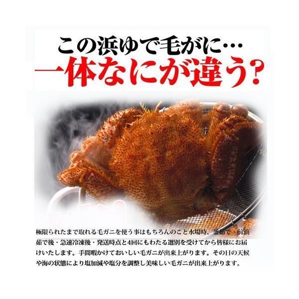 北海道産浜ゆで毛がに(約500g)/ 北海道 ボイル 毛がに ギフト カニ かに sakenosakana 03