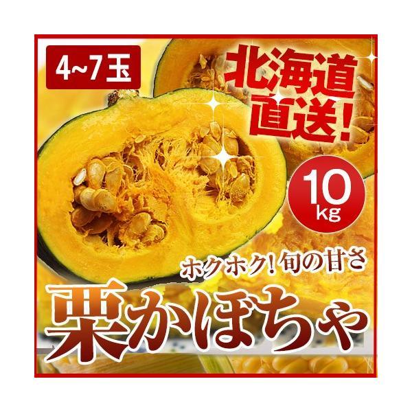 栗かぼちゃ 北海道産 10kg(4〜7玉)/ 送料無料