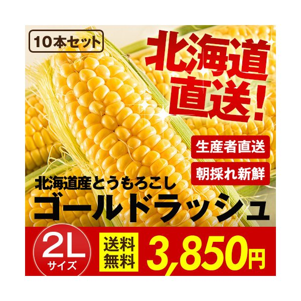 北海道産 朝採れとうもろこし ゴールドラッシュ(一番果) 2Lサイズ×10本セット|sakenosakana