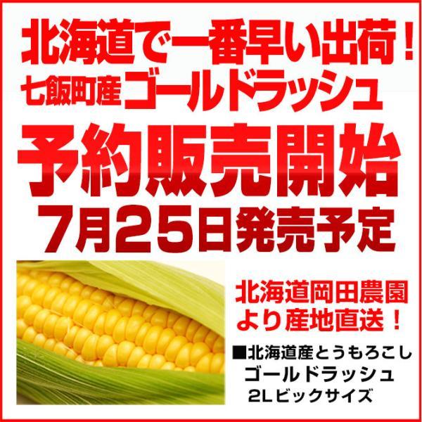 北海道産 朝採れとうもろこし ゴールドラッシュ(一番果) 2Lサイズ×10本セット|sakenosakana|02