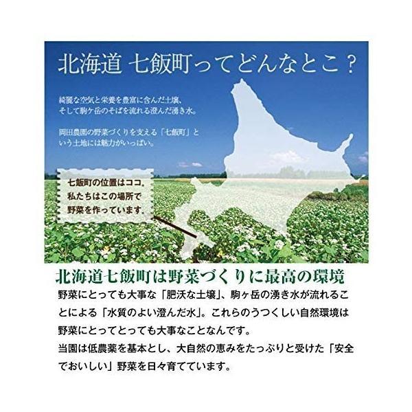 北海道産 朝採れとうもろこし ゴールドラッシュ(一番果) 2Lサイズ×10本セット|sakenosakana|04