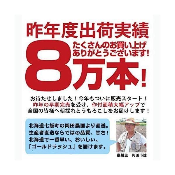 北海道産 朝採れとうもろこし ゴールドラッシュ(一番果) 2Lサイズ×10本セット|sakenosakana|05