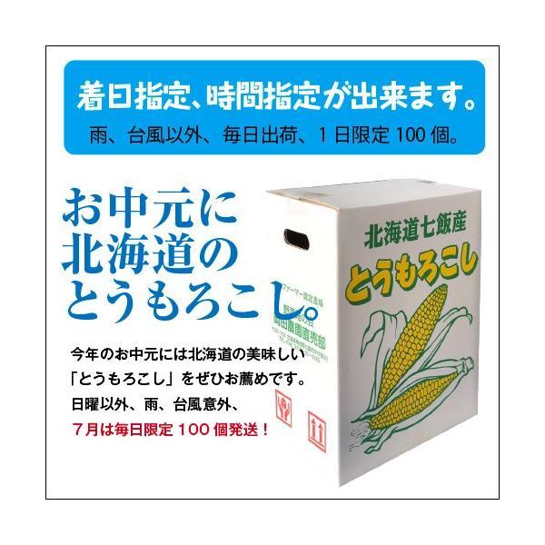 北海道産 朝採れとうもろこし ゴールドラッシュ(一番果) 2Lサイズ×10本セット|sakenosakana|07