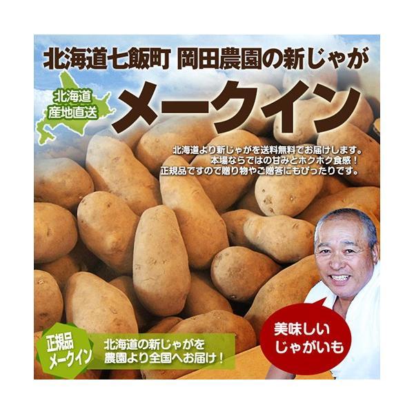北海道産 じゃがいも メークイン 20kg (M〜Lサイズ)/ 岡田農園 送料無料