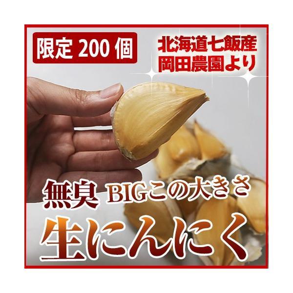 北海道七飯産 無臭ビックにんにく(約200g)/メール便送料無料|sakenosakana