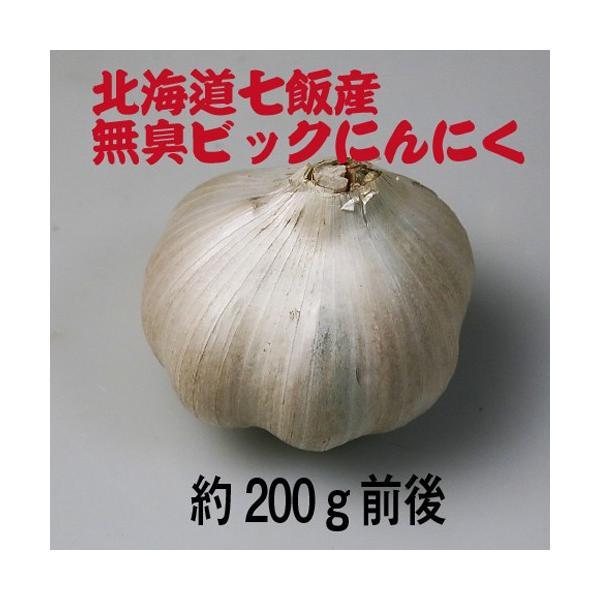 北海道七飯産 無臭ビックにんにく(約200g)/メール便送料無料|sakenosakana|04