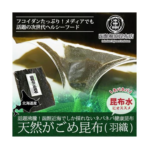 がごめ昆布(羽織) (120g) / 天然 函館産 北海道産|sakenosakana