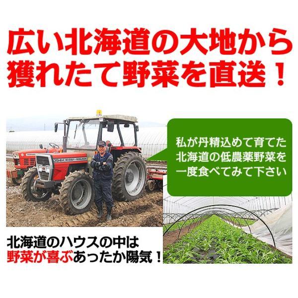 北海道産 グリーンアスパラ 1kg L〜2Lサイズ / 産地直送 送料無料|sakenosakana|03