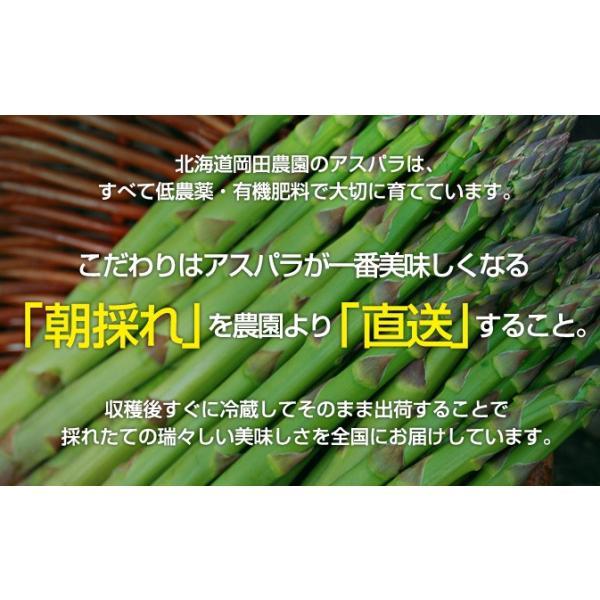 北海道産 グリーンアスパラ 1kg L〜2Lサイズ / 産地直送 送料無料|sakenosakana|04