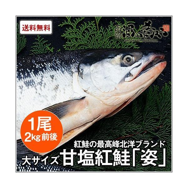 北洋産甘塩紅鮭「姿」(ロシア産)(1尾/約2kg)/ 焼き魚 おかず 紅鮭 サーモン ギフト|sakenosakana