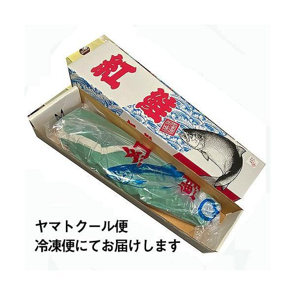 北洋産甘塩紅鮭「姿」(ロシア産)(1尾/約2kg)/ 焼き魚 おかず 紅鮭 サーモン ギフト|sakenosakana|06