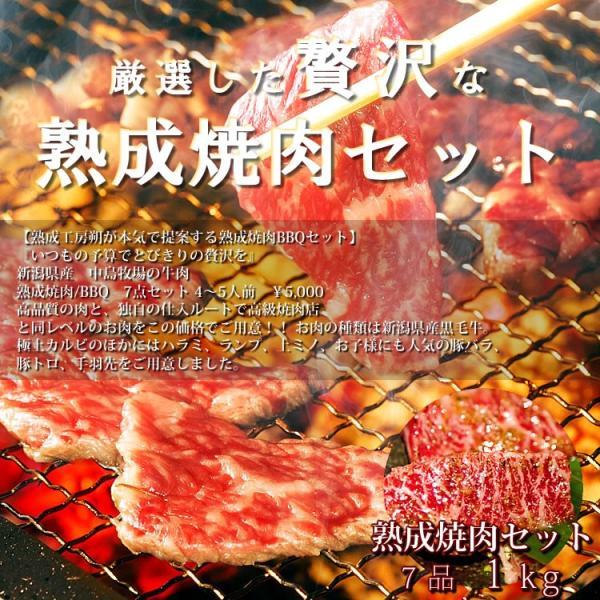 焼肉セット あすつく送料無料 国産牛肉 黒毛カルビ ハラミ ランプ 豚バラ 上ミノ 豚トロ 国産手羽先 4〜5人前 合計1kg|saku2