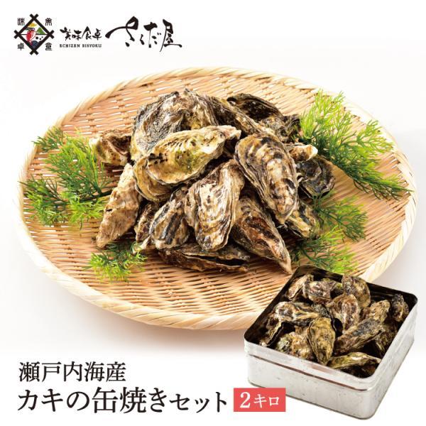 ガンガン焼き 海鮮 BBQセット バーベキューセット 牡蠣缶 2kg 20〜30個 かき カキ【冷凍便】