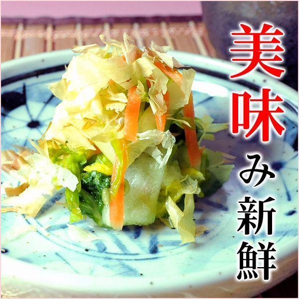 漬物 漬け物 白菜うま味漬   あっさり風味 うま味だし漬け 浅漬け /大和御用達 今井十返舎