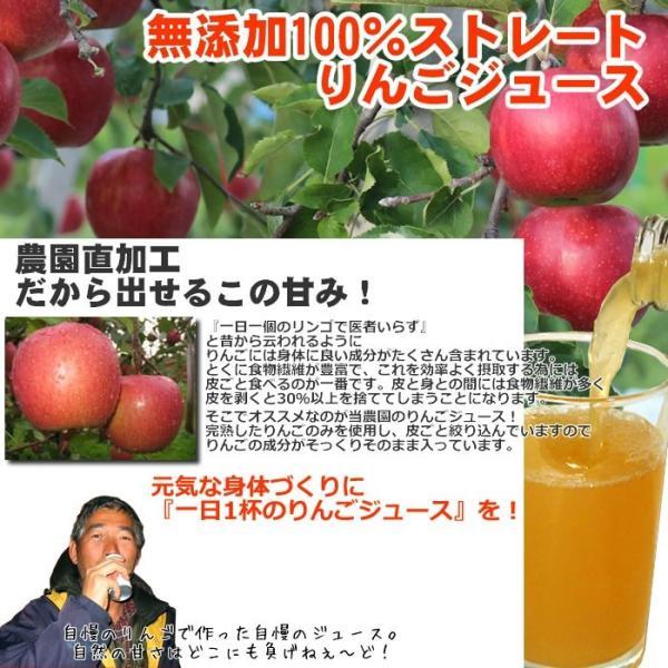 りんごジュース ストレート 青森 無添加 1L 6本 sakuraba-apple 02