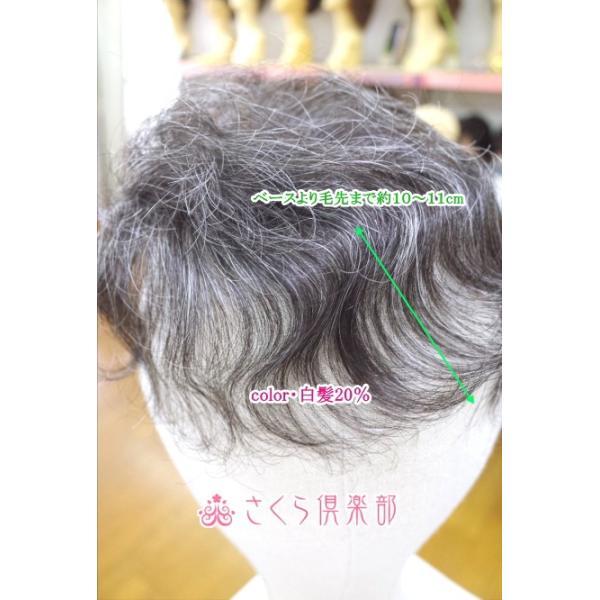 部分ウィッグ かつら ミセス向け 人工毛 ナチュラルカール 白髪入り各種 総手植え製 Sサイズ top-sm 医療用にも最適  メーカー: