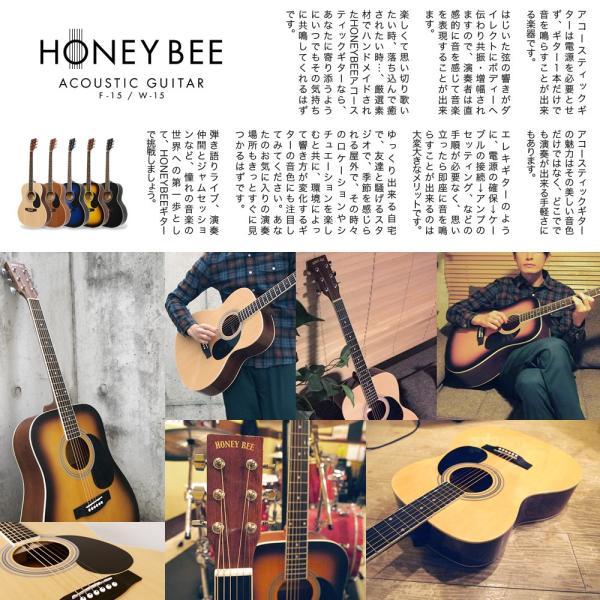 アコースティックギター初心者セット 16点入門セット W-15/F-15(大型)|sakuragakki|04