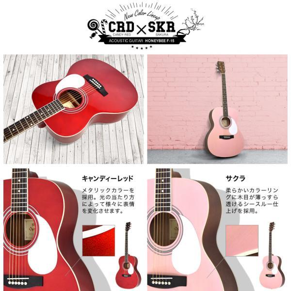 アコースティックギター初心者セット 16点入門セット W-15/F-15(大型)|sakuragakki|09