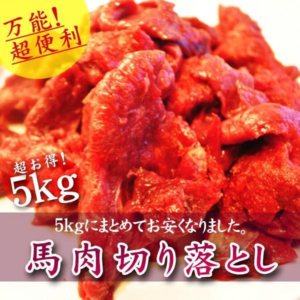馬肉 パーティ 焼肉 BBQ 馬肉切り落とし 5kg|sakurameat