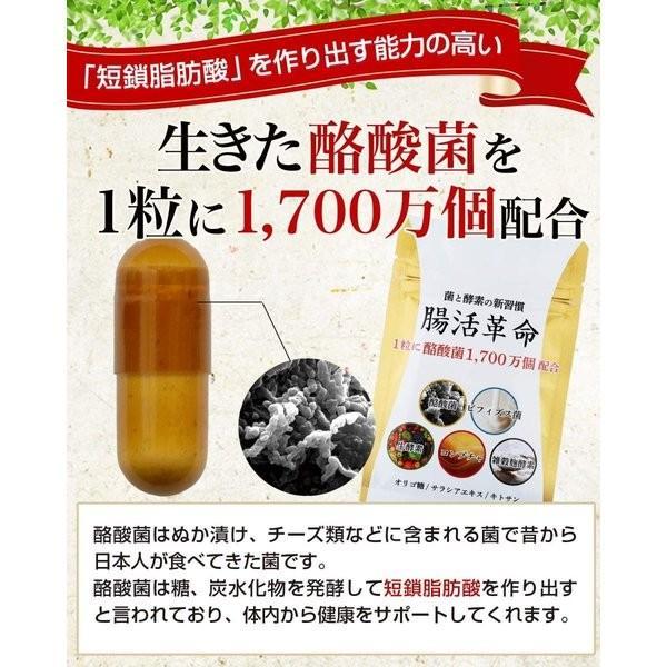 腸活革命 菌と酵素の新習慣 サプリメント 酪酸菌 ビフィズス菌 31日分|sakuramedical|02