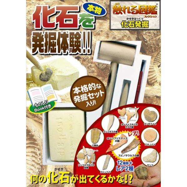 触れる図鑑シリーズ vol.04 化石発掘 |sakusaku3939