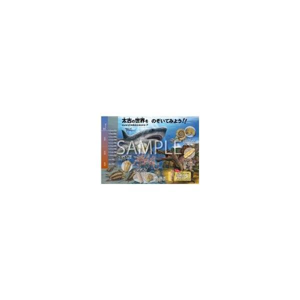 触れる図鑑シリーズ vol.04 化石発掘 |sakusaku3939|02