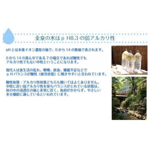金泉の水 猿投温泉  飲める天然温泉水 2リットルペットボトル×6本 sanageonsen 02