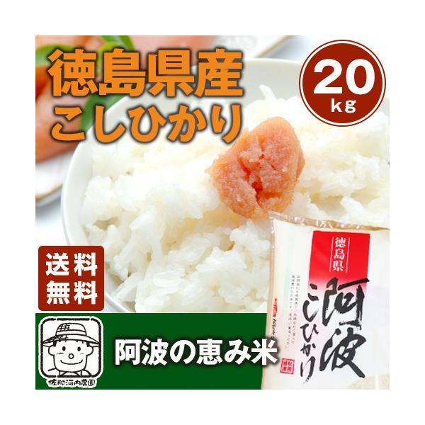 令和3年産 徳島県産コシヒカリ 阿波の恵み米こしひかり 20kg(5kg×4袋)【送料無料】※北海道、沖縄及び離島は別途発送料金が発生します