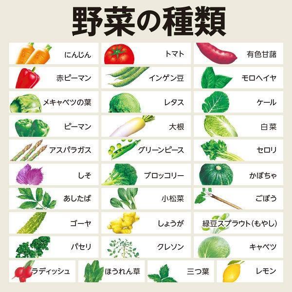 伊藤園 1日分の野菜 200ml紙パック×24本入|sanchoku-support|03